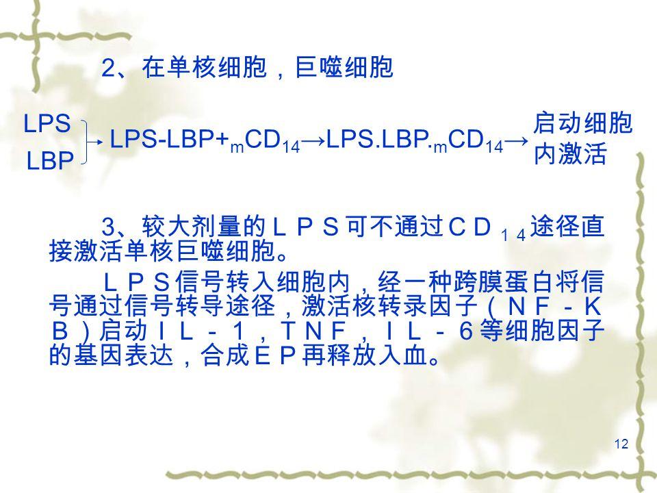 12 2 、在单核细胞,巨噬细胞 3 、较大剂量的LPS可不通过CD 14 途径直 接激活单核巨噬细胞。 LPS信号转入细胞内,经一种跨膜蛋白将信 号通过信号转导途径,激活核转录因子(NF-K B)启动IL-1,TNF,IL-6等细胞因子 的基因表达,合成EP再释放入血。 LPS LBP LPS-LBP+ m CD 14 →LPS.LBP.