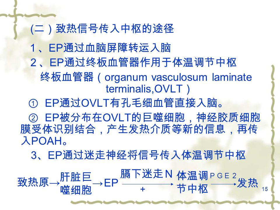 15 ( 二)致热信号传入中枢的途径 1、 EP 通过血脑屏障转运入脑 2、 EP 通过终板血管器作用于体温调节中枢 终板血管器( organum vasculosum laminate terminalis,OVLT ) ① EP 通过 OVLT 有孔毛细血管直接入脑。 ② EP 被分布在 OVLT 的巨噬细胞,神经胶质细胞 膜受体识别结合,产生发热介质等新的信息,再传 入 POAH 。 3 、 EP 通过迷走神经将信号传入体温调节中枢 致热原 → 肝脏巨 噬细胞 →EP 膈下迷走N 体温调 节中枢 PGE2 发热 +