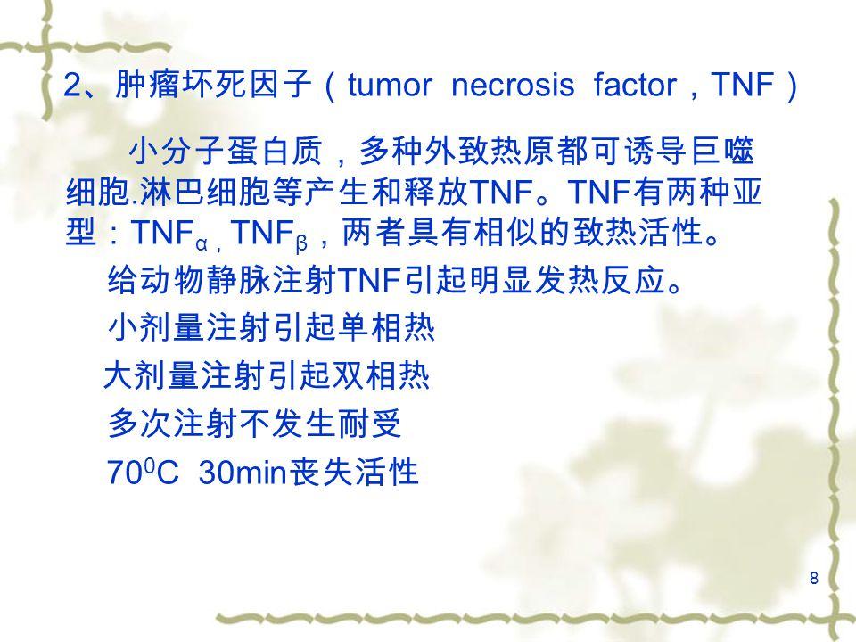 8 2 、肿瘤坏死因子( tumor necrosis factor , TNF ) 小分子蛋白质,多种外致热原都可诱导巨噬 细胞.
