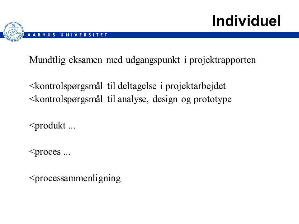 Individuel Mundtlig eksamen med udgangspunkt i projektrapporten <kontrolspørgsmål til deltagelse i projektarbejdet <kontrolspørgsmål til analyse, design og prototype <produkt...