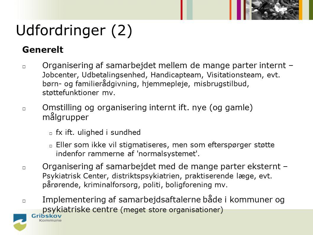 Udfordringer (2) Generelt □ Organisering af samarbejdet mellem de mange parter internt – Jobcenter, Udbetalingsenhed, Handicapteam, Visitationsteam, evt.