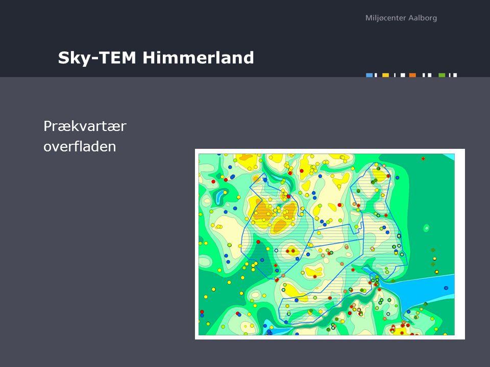 Sky-TEM Himmerland Prækvartær overfladen