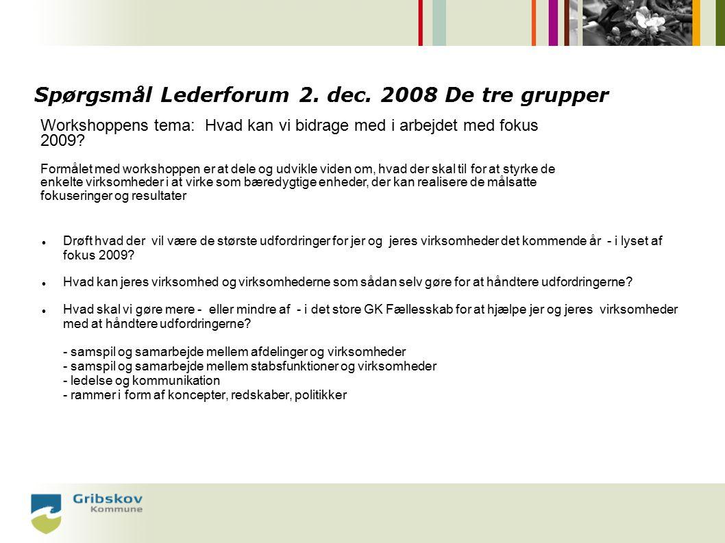 Spørgsmål Lederforum 2. dec.