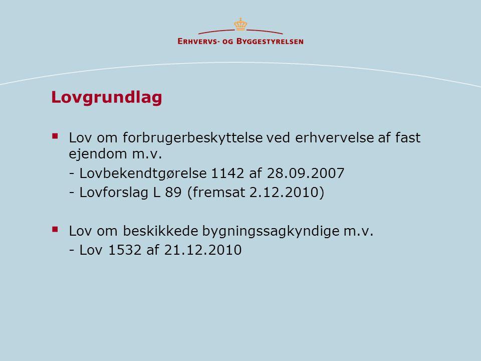 Lovgrundlag  Lov om forbrugerbeskyttelse ved erhvervelse af fast ejendom m.v.