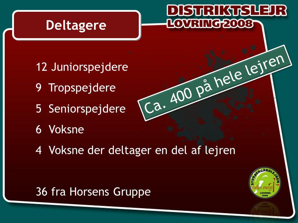Deltagere 12 Juniorspejdere 9 Tropspejdere 5 Seniorspejdere 6 Voksne 4 Voksne der deltager en del af lejren 36 fra Horsens Gruppe Ca.