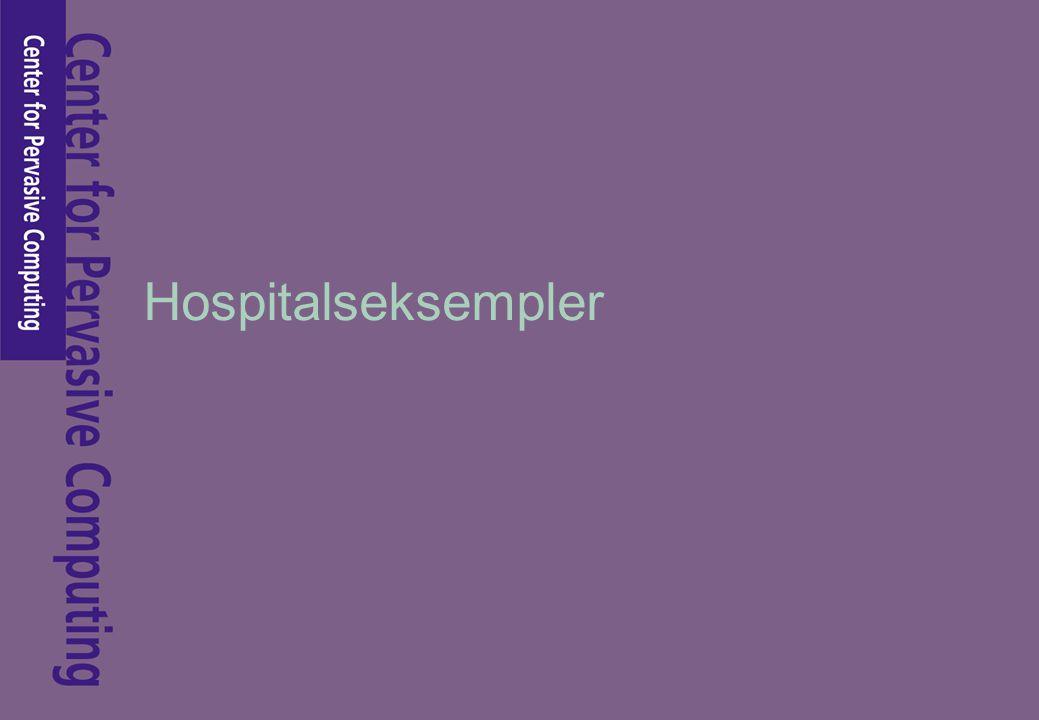 Hospitalseksempler