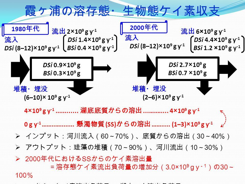 霞ヶ浦の溶存態・生物態ケイ素収支  インプット:河川流入( 60 ~ 70% )、底質からの溶出( 30 ~ 40% )  アウトプット:珪藻の堆積( 70 ~ 90% )、河川流出( 10 ~ 30% )  2000 年代における SS からのケイ素溶出量 =溶存態ケイ素流出負荷量の増加分( 3.0×10 9 g y - 1 )の 30 ~ 100 %  SS からのケイ素溶出負荷量 = 湖内の全溶出負荷量の 20 ~ 40% DSi 0.9×10 9 g BSi 0.3×10 9 g 流入 DSi (8–12)×10 9 g y -1 流出 2×10 9 g y -1 DSi 1.4×10 9 g y -1 BSi 0.4 ×10 9 g y -1 堆積・埋没 (6–10)× 10 9 g y -1 1980 年代 DSi 2.7×10 9 g BSi 0.7 ×10 9 g 流入 DSi (8–12)×10 9 g y -1 流出 6×10 9 g y -1 DSi 4.4×10 9 g y -1 BSi 1.2 ×10 9 g y -1 4×10 9 g y -1............