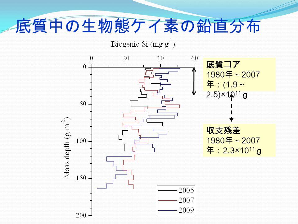 底質中の生物態ケイ素の鉛直分布 底質コア 1980 年~ 2007 年: (1.9 ~ 2.5)×10 11 g 収支残差 1980 年~ 2007 年: 2.3×10 11 g