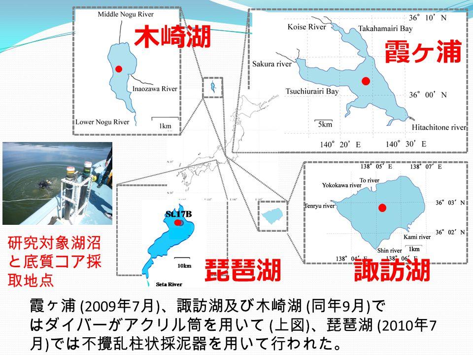 霞ヶ浦 木崎湖 諏訪湖琵琶湖 研究対象湖沼 と底質コア採 取地点 霞ヶ浦 (2009 年 7 月 ) 、諏訪湖及び木崎湖 ( 同年 9 月 ) で はダイバーがアクリル筒を用いて ( 上図 ) 、琵琶湖 (2010 年 7 月 ) では不攪乱柱状採泥器を用いて行われた。