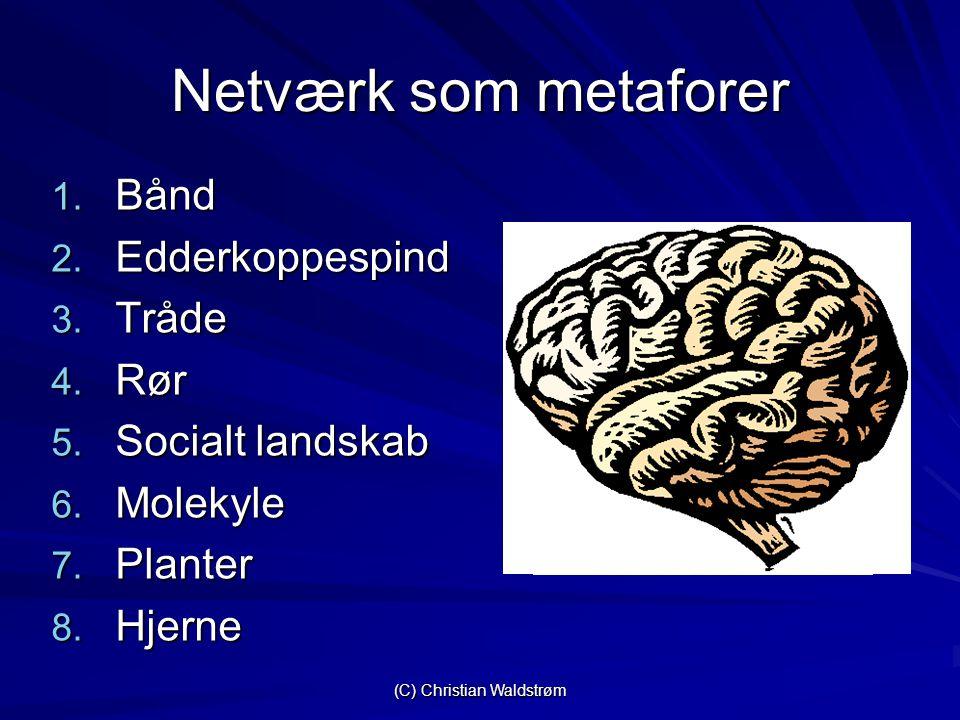 (C) Christian Waldstrøm Netværk som metaforer 1. Bånd 2.