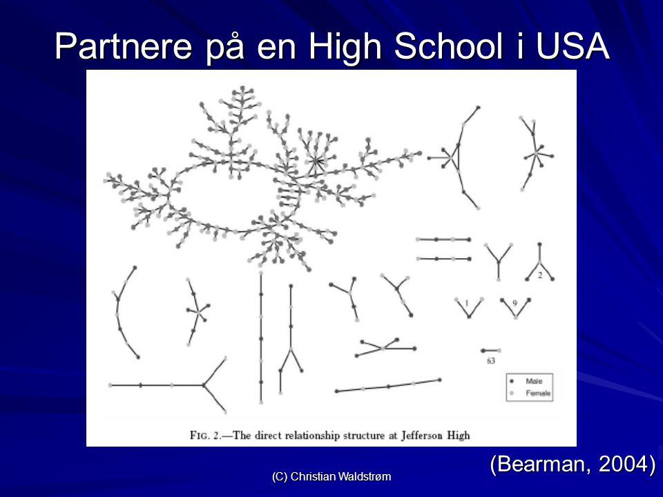 (C) Christian Waldstrøm Partnere på en High School i USA (Bearman, 2004)