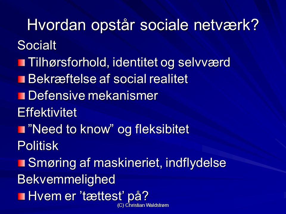(C) Christian Waldstrøm Hvordan opstår sociale netværk.