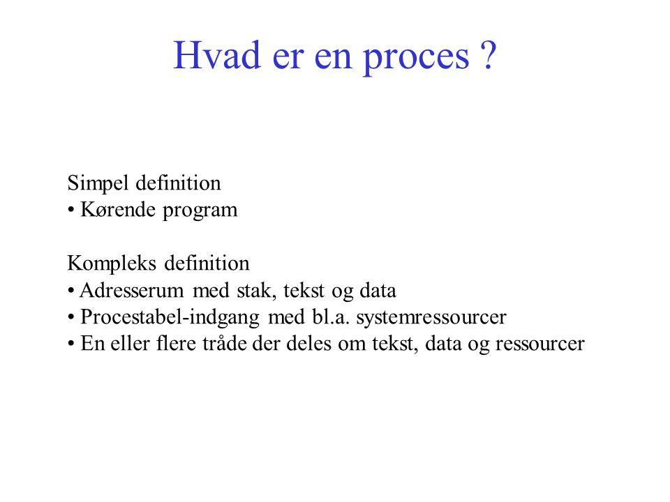 Hvad er en proces .