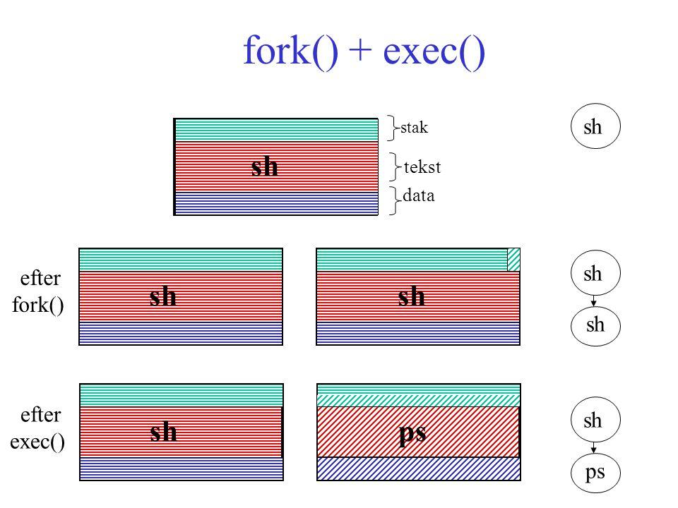 fork() + exec() stak tekst data sh ps efter fork() efter exec() sh ps