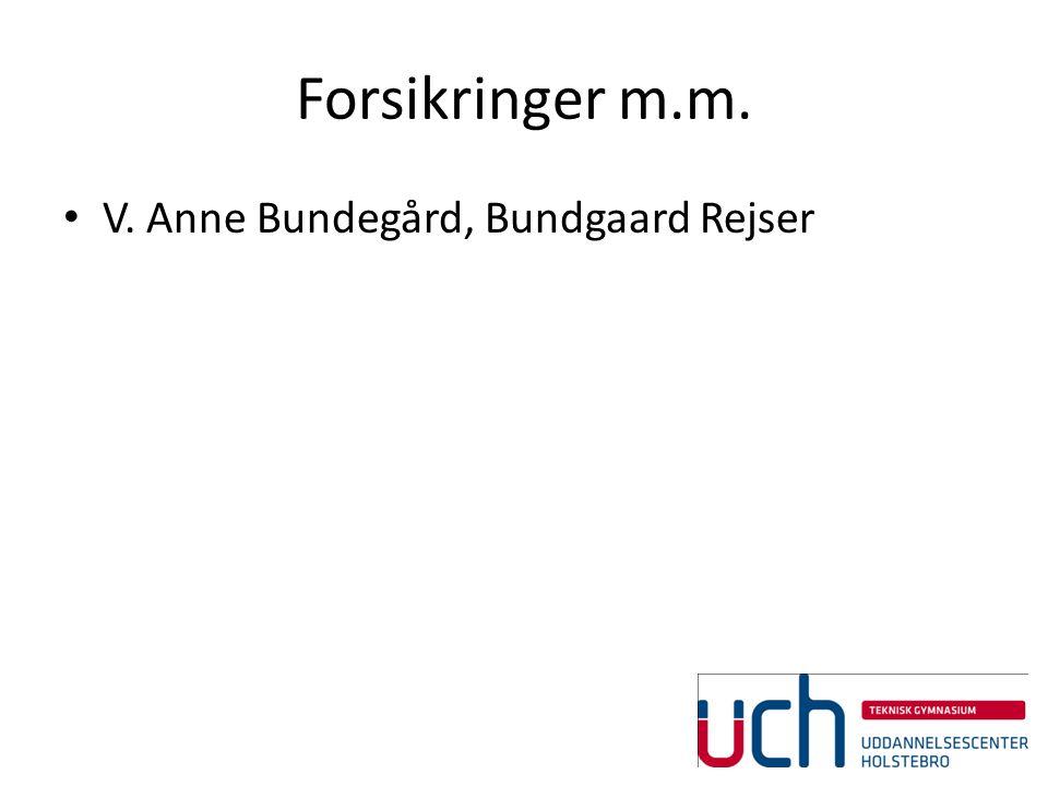 Forsikringer m.m. V. Anne Bundegård, Bundgaard Rejser