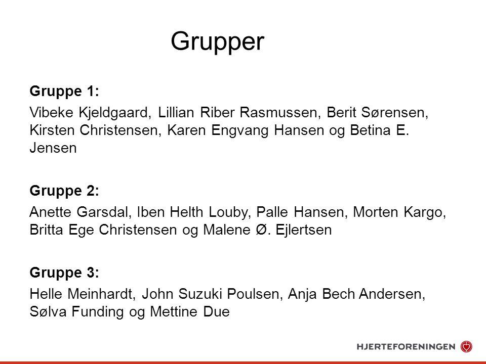 Grupper Gruppe 1: Vibeke Kjeldgaard, Lillian Riber Rasmussen, Berit Sørensen, Kirsten Christensen, Karen Engvang Hansen og Betina E.