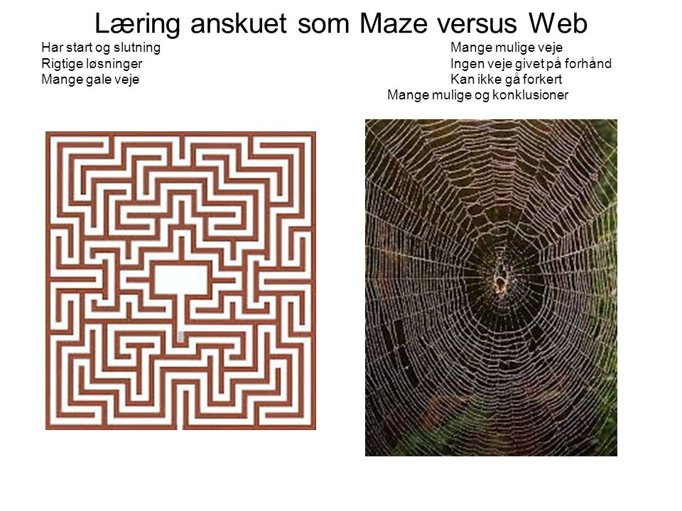 Læring anskuet som Maze versus Web Har start og slutning Mange mulige veje Rigtige løsninger Ingen veje givet på forhånd Mange gale veje Kan ikke gå forkert Mange mulige og konklusioner