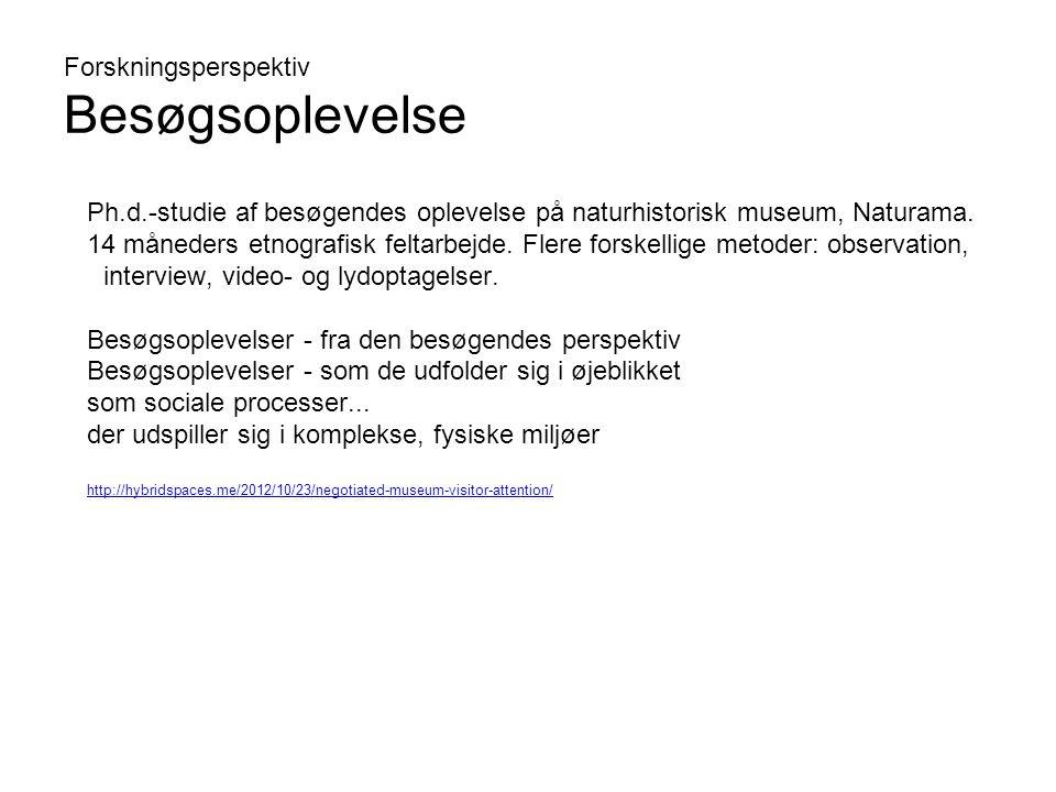Forskningsperspektiv Besøgsoplevelse Ph.d.-studie af besøgendes oplevelse på naturhistorisk museum, Naturama.