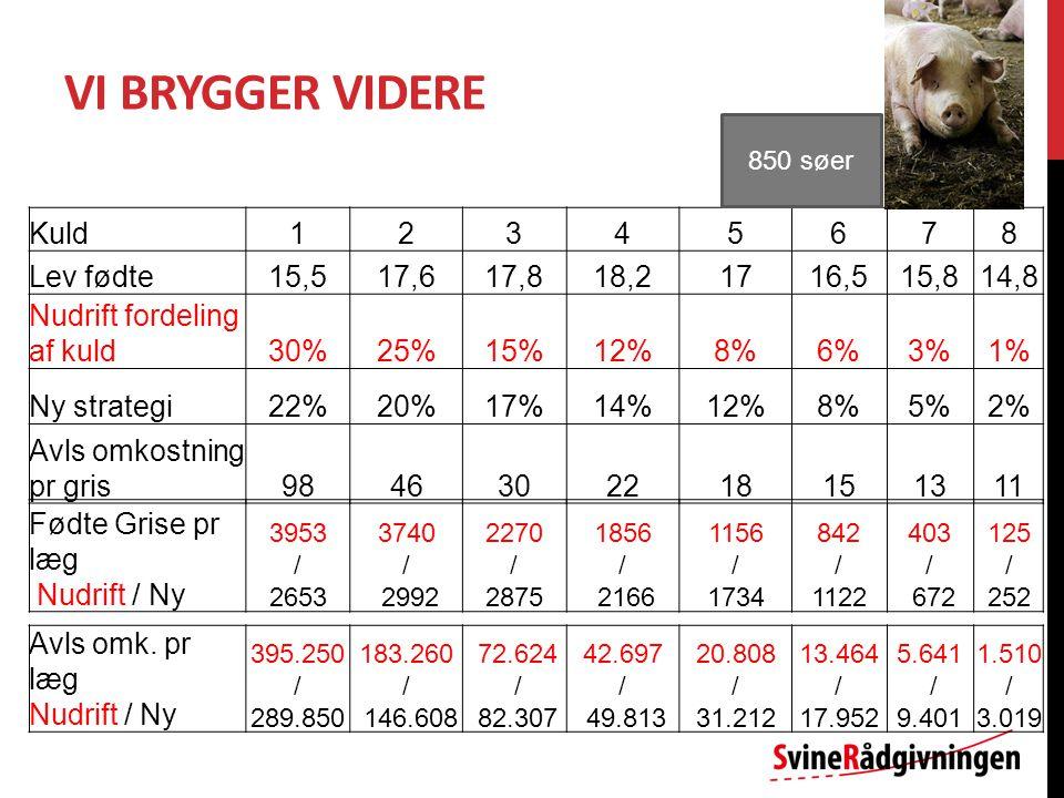 VI BRYGGER VIDERE Kuld12345678 Lev fødte15,517,617,818,21716,515,814,8 Nudrift fordeling af kuld30%25%15%12%8%6%3%1% Ny strategi22%20%17%14%12%8%5%2% Avls omkostning pr gris9846302218151311 850 søer Fødte Grise pr læg Nudrift / Ny 3953 / 2653 3740 / 2992 2270 / 2875 1856 / 2166 1156 / 1734 842 / 1122 403 / 672 125 / 252 Avls omk.