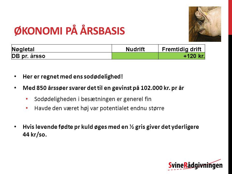ØKONOMI PÅ ÅRSBASIS NøgletalNudriftFremtidig drift DB pr.