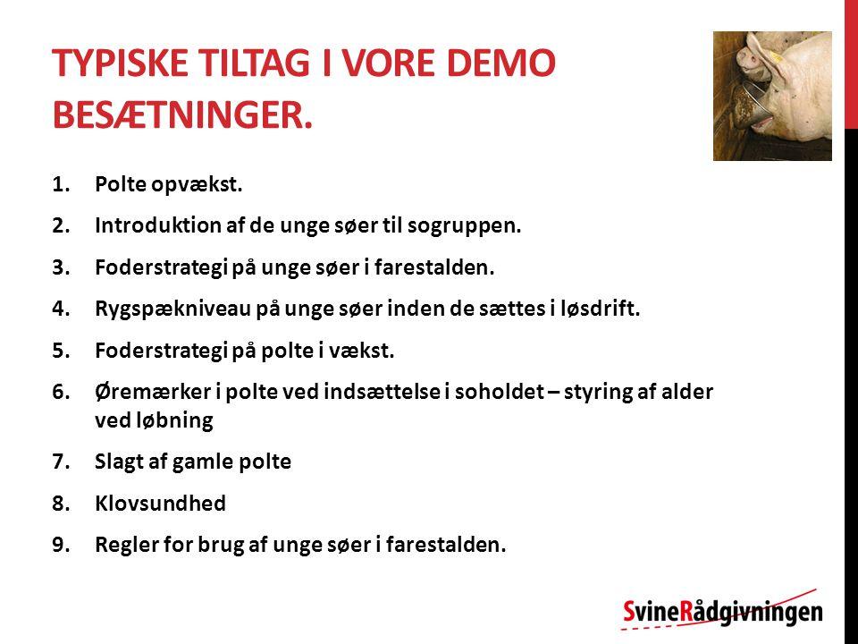 TYPISKE TILTAG I VORE DEMO BESÆTNINGER. 1.Polte opvækst.