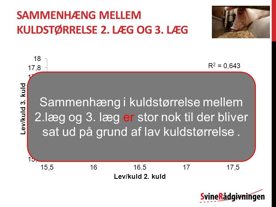 SAMMENHÆNG MELLEM KULDSTØRRELSE 2. LÆG OG 3.