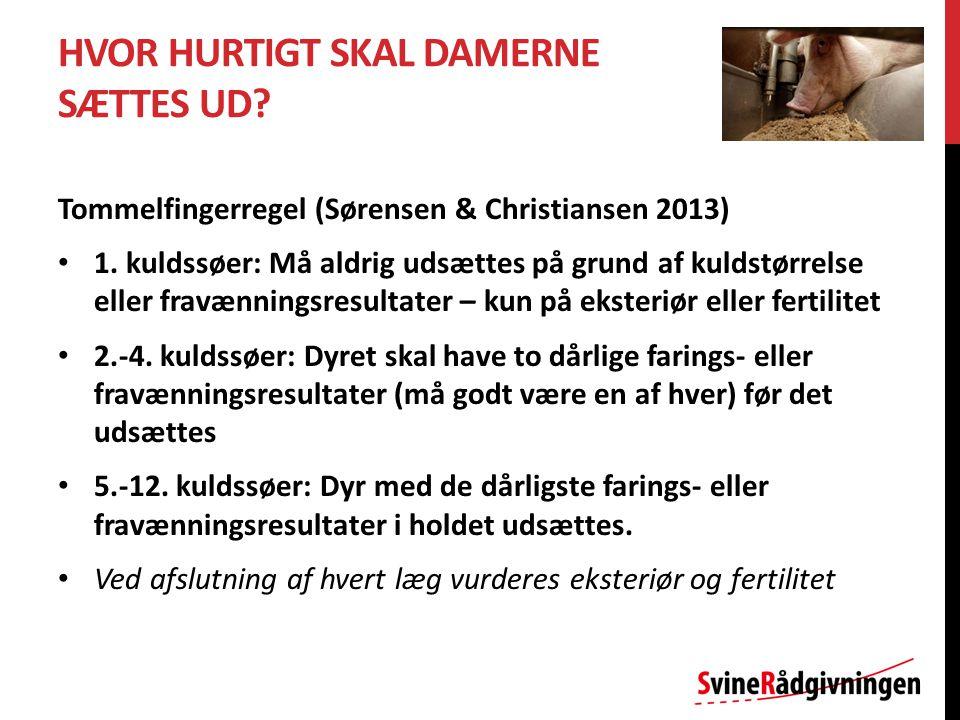 HVOR HURTIGT SKAL DAMERNE SÆTTES UD. Tommelfingerregel (Sørensen & Christiansen 2013) 1.