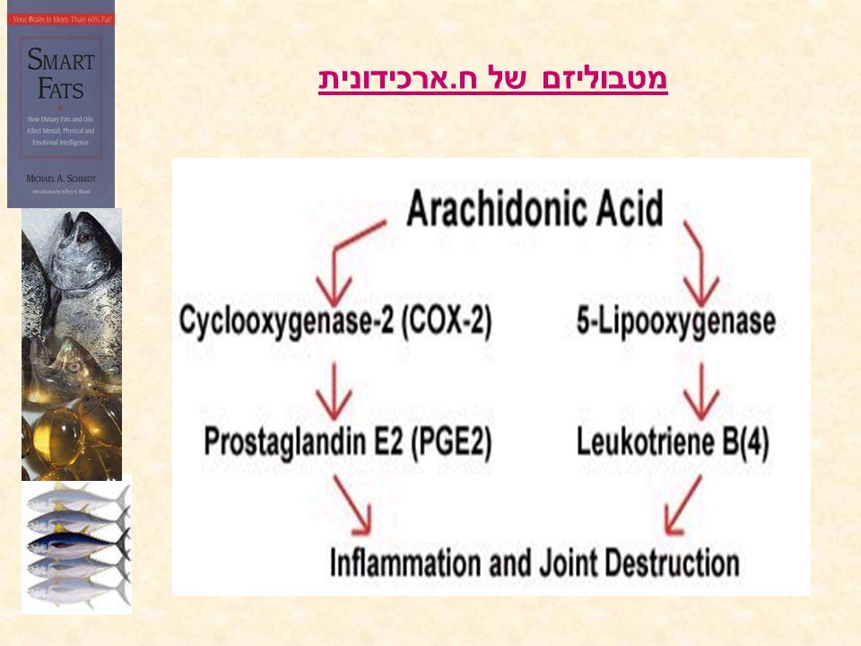 מטבוליזם של ח. ארכידונית