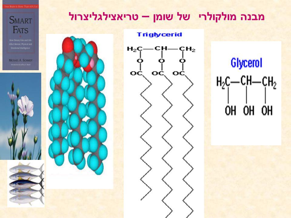 מבנה מולקולרי של שומן – טריאצילגליצרול
