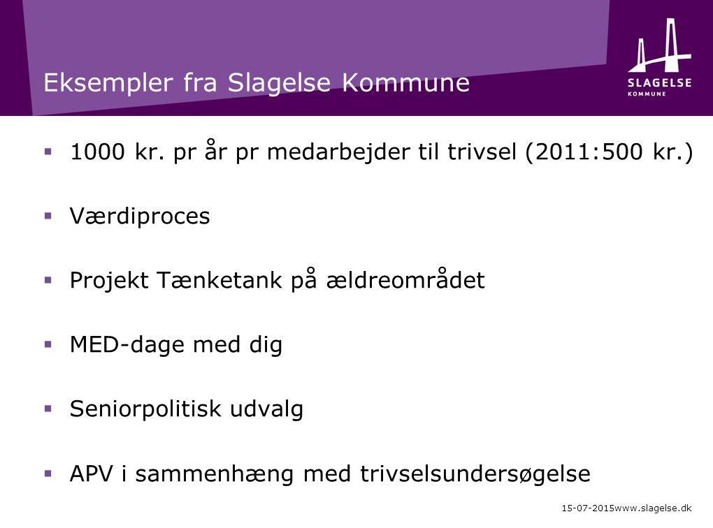 Eksempler fra Slagelse Kommune  1000 kr.