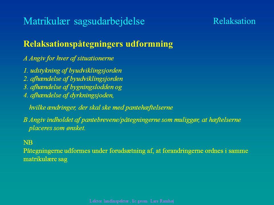 Matrikulær sagsudarbejdelse Relaksation Relaksationspåtegningers udformning A Angiv for hver af situationerne 1.