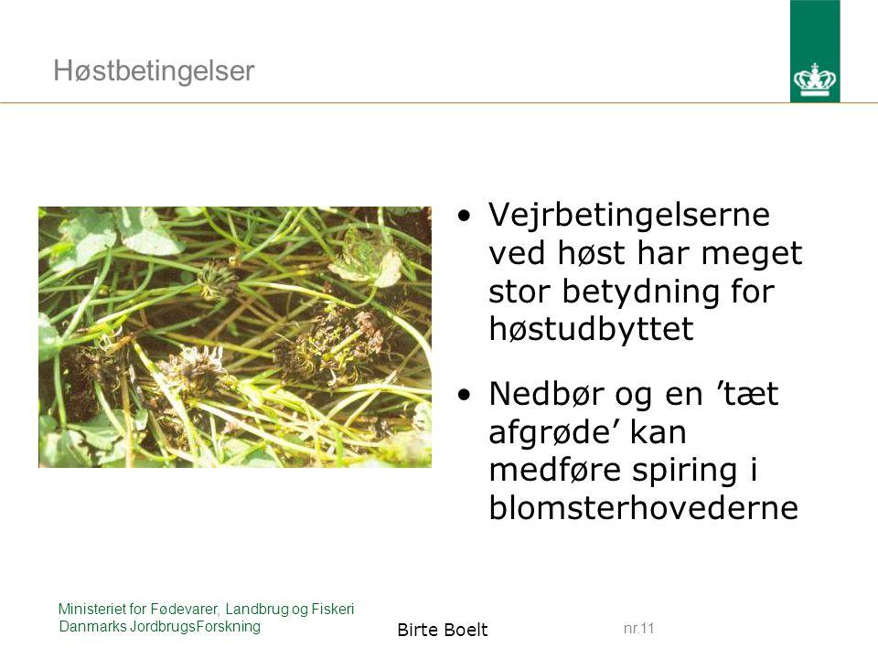 nr.11 Ministeriet for Fødevarer, Landbrug og Fiskeri Danmarks JordbrugsForskning Birte Boelt Høstbetingelser Vejrbetingelserne ved høst har meget stor betydning for høstudbyttet Nedbør og en 'tæt afgrøde' kan medføre spiring i blomsterhovederne