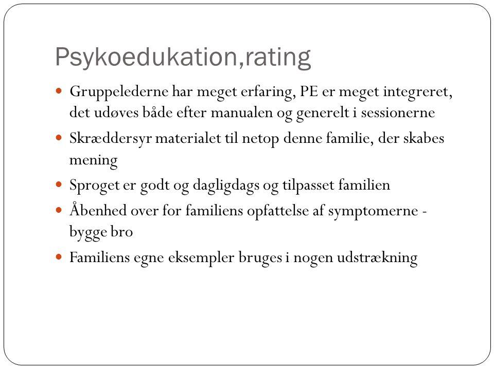 Psykoedukation,rating Gruppelederne har meget erfaring, PE er meget integreret, det udøves både efter manualen og generelt i sessionerne Skræddersyr materialet til netop denne familie, der skabes mening Sproget er godt og dagligdags og tilpasset familien Åbenhed over for familiens opfattelse af symptomerne - bygge bro Familiens egne eksempler bruges i nogen udstrækning
