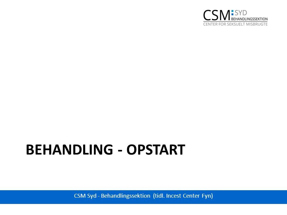 BEHANDLING - OPSTART CSM Syd - Behandlingssektion (tidl. Incest Center Fyn)