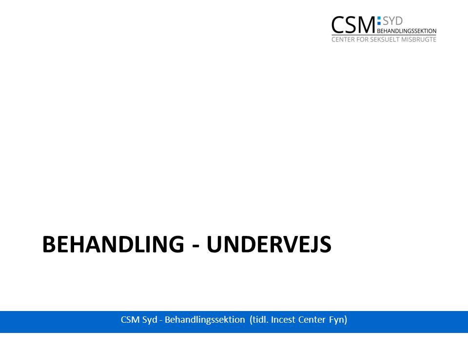 BEHANDLING - UNDERVEJS CSM Syd - Behandlingssektion (tidl. Incest Center Fyn)