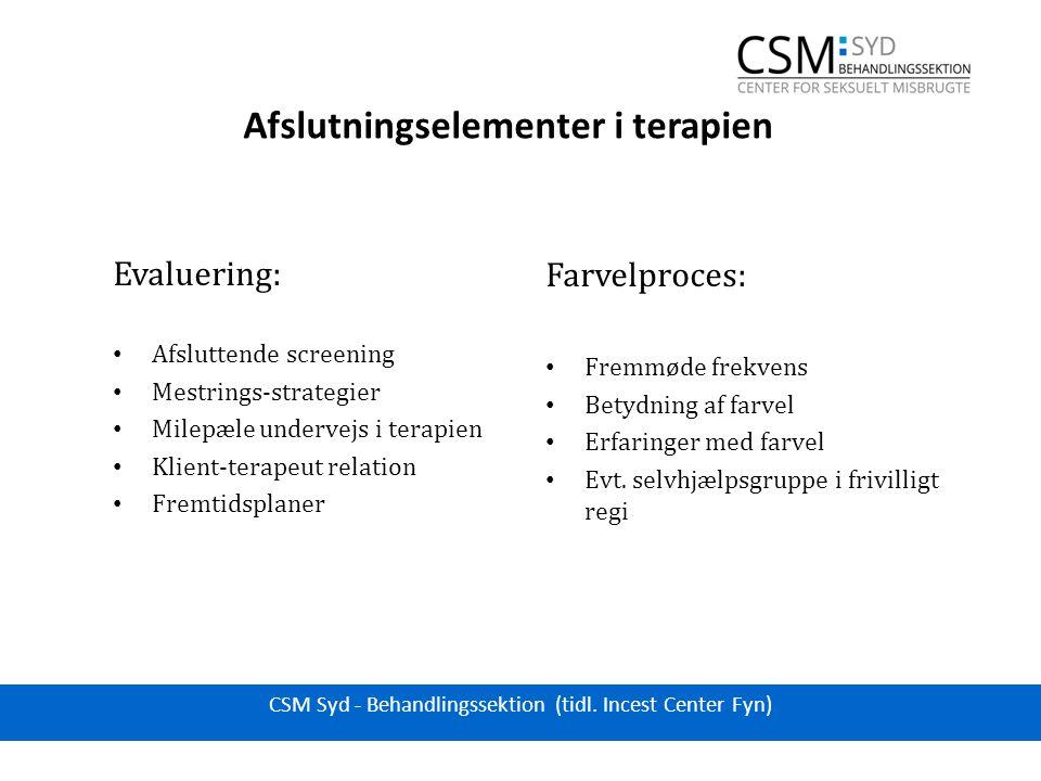 Afslutningselementer i terapien Evaluering: Afsluttende screening Mestrings-strategier Milepæle undervejs i terapien Klient-terapeut relation Fremtidsplaner Farvelproces: Fremmøde frekvens Betydning af farvel Erfaringer med farvel Evt.