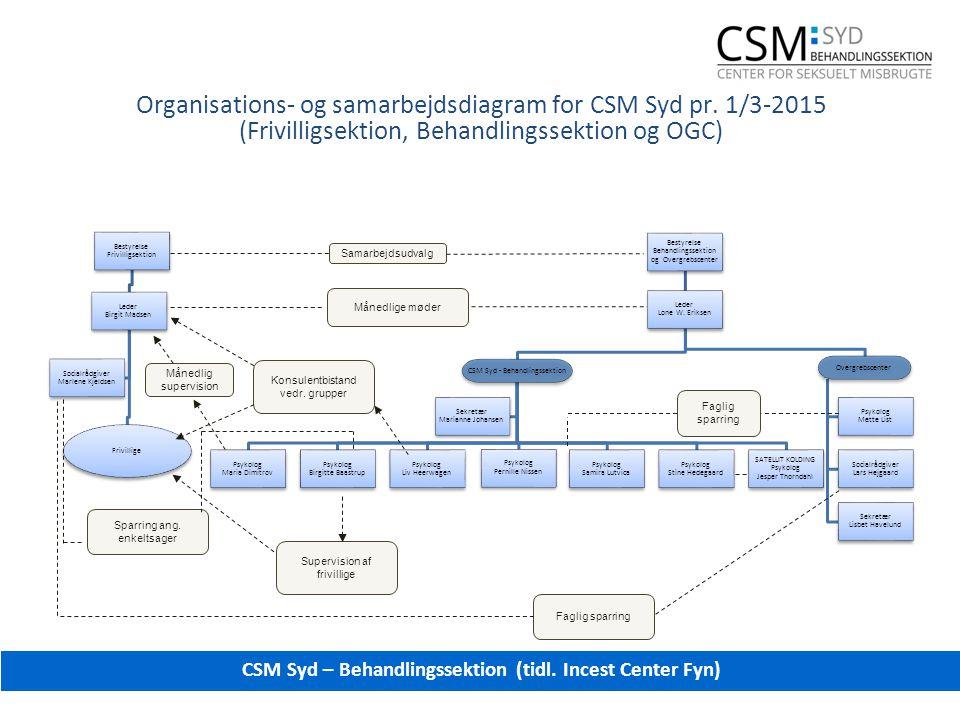 Organisations- og samarbejdsdiagram for CSM Syd pr.