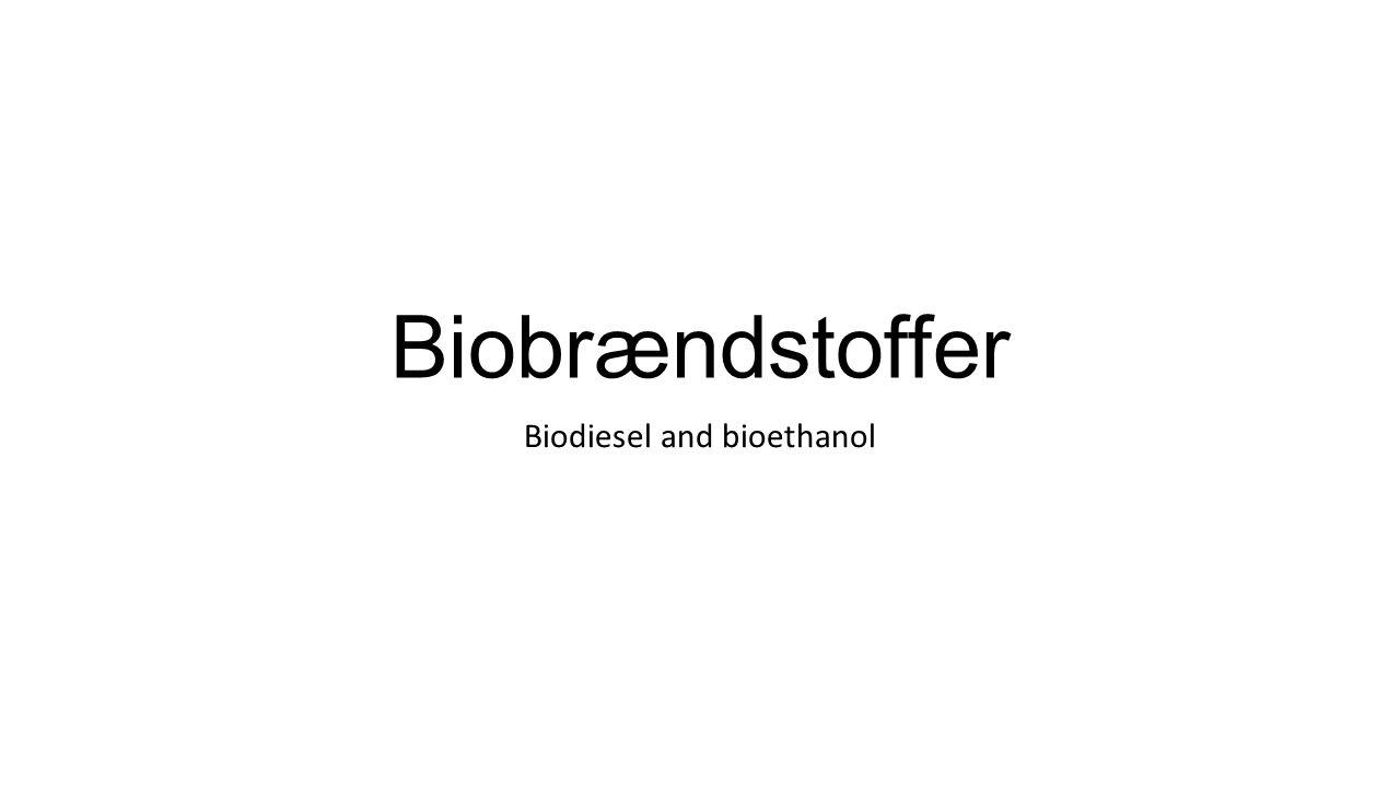 Hvordan fremstiller man biodiesel? FedtstofEthanolBiodiesel