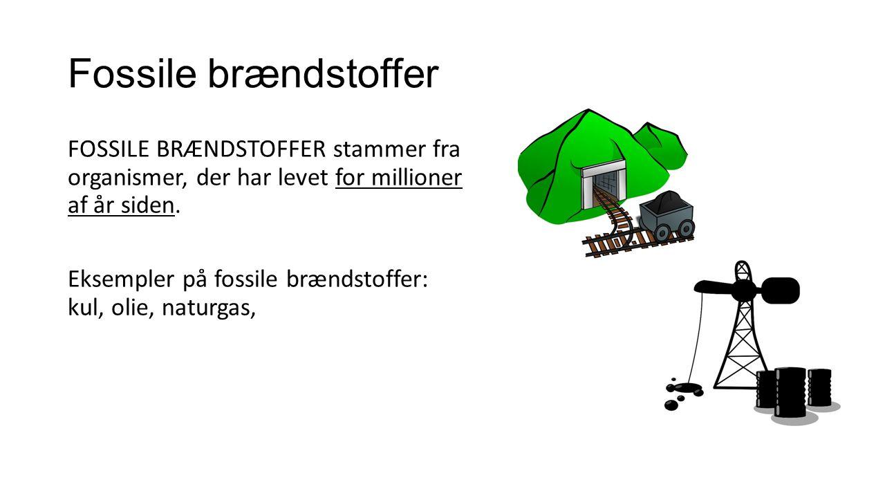 Biobrændstoffer BIOBRÆNDSTOFFER stammer fra organismer, der har levet for nylig.