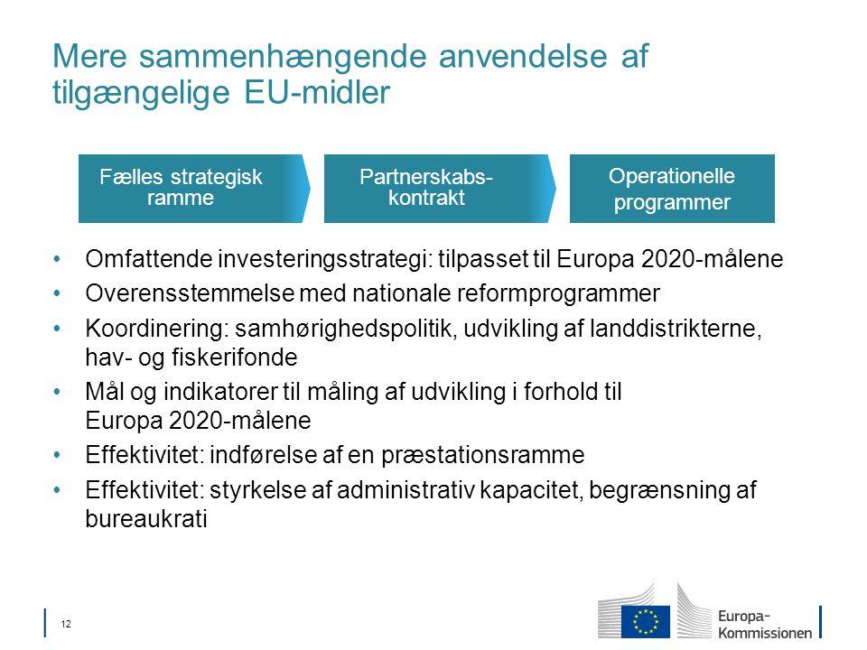 12 Mere sammenhængende anvendelse af tilgængelige EU-midler Omfattende investeringsstrategi: tilpasset til Europa 2020-målene Overensstemmelse med nationale reformprogrammer Koordinering: samhørighedspolitik, udvikling af landdistrikterne, hav- og fiskerifonde Mål og indikatorer til måling af udvikling i forhold til Europa 2020-målene Effektivitet: indførelse af en præstationsramme Effektivitet: styrkelse af administrativ kapacitet, begrænsning af bureaukrati Operationelle programmer Partnerskabs- kontrakt Fælles strategisk ramme