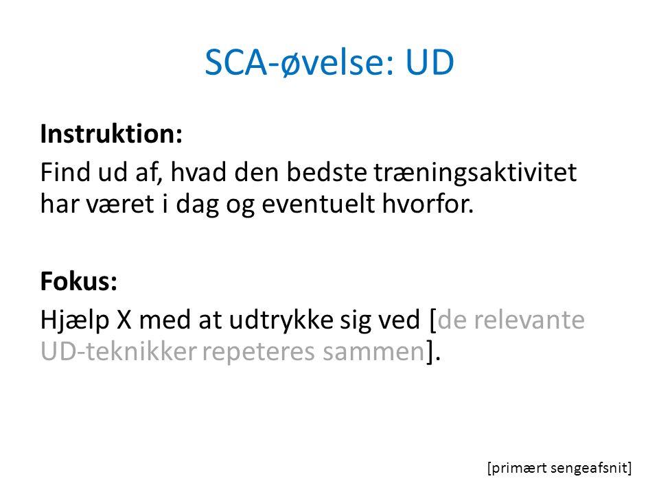 SCA-øvelse: UD Instruktion: Find ud af, hvad den bedste træningsaktivitet har været i dag og eventuelt hvorfor.