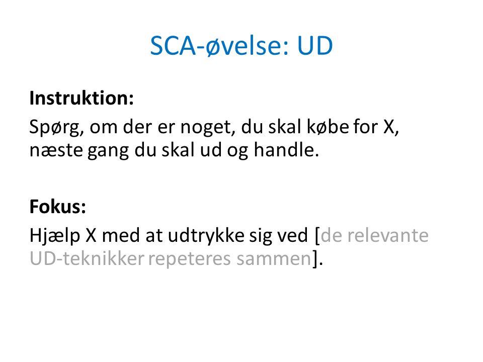 SCA-øvelse: UD Instruktion: Spørg, om der er noget, du skal købe for X, næste gang du skal ud og handle.