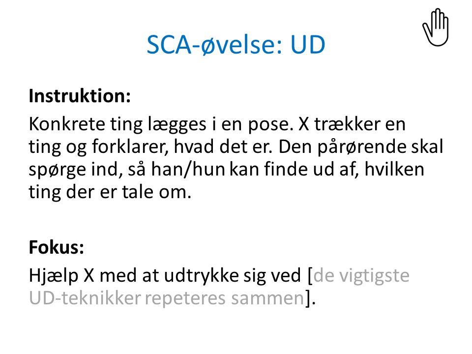 SCA-øvelse: UD Instruktion: Konkrete ting lægges i en pose.