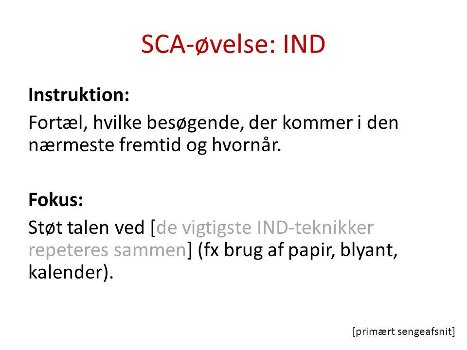SCA-øvelse: IND Instruktion: Se på en billedsekvens.