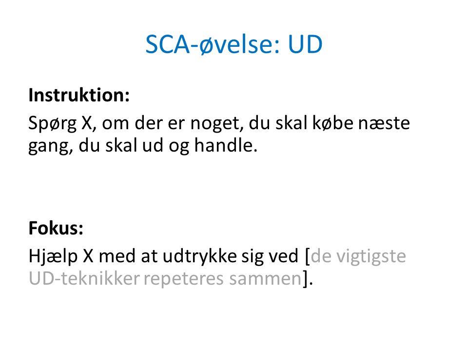 SCA-øvelse: UD Instruktion: Spørg X, om der er noget, du skal købe næste gang, du skal ud og handle.
