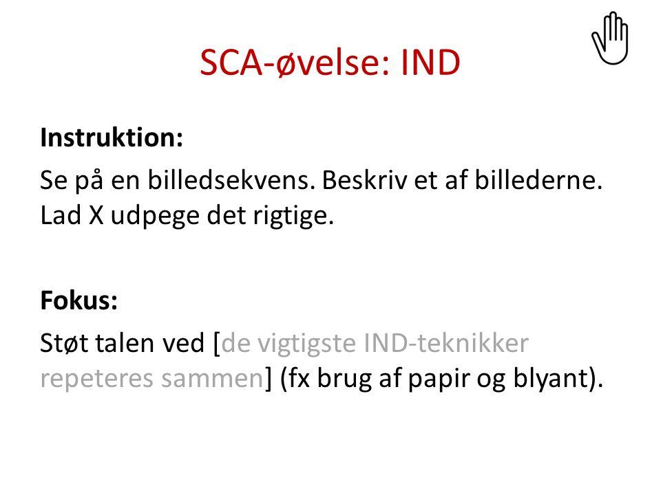 SCA-øvelse: IND Instruktion: Vælg et billede og beskriv det for X, så han/hun kan udpege det blandt de øvrige billeder på bordet.