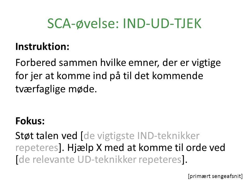 SCA-øvelse: IND-UD-TJEK Instruktion: Forbered sammen hvilke emner, der er vigtige for jer at komme ind på til det kommende tværfaglige møde.