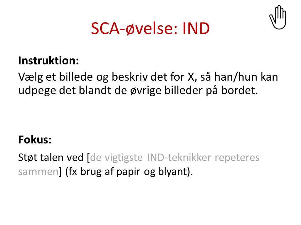 SCA-øvelse: IND Instruktion: Fortæl, hvad du skal i løbet af ugen.