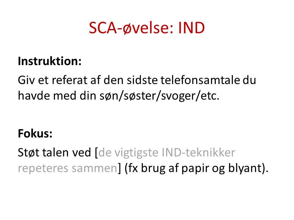 SCA-øvelse: IND Instruktion: Fortæl om noget, der rør sig i børnenes liv for tiden.