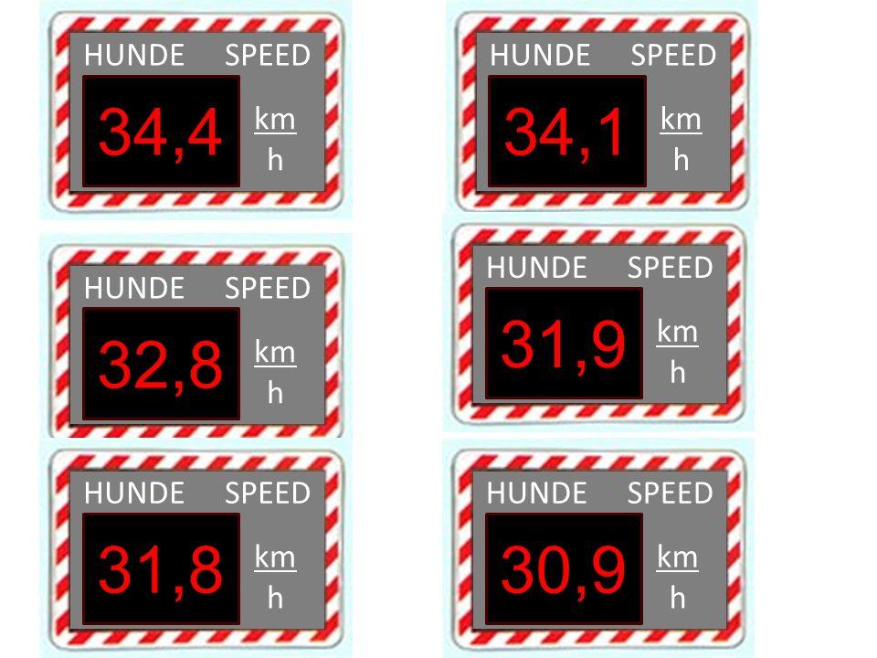 HUNDE SPEED km h 34,4 HUNDE SPEED km h 34,1 HUNDE SPEED km h 32,8 HUNDE SPEED km h 31,9 HUNDE SPEED km h 31,8 HUNDE SPEED km h 30,9